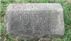 Catherine R Aber