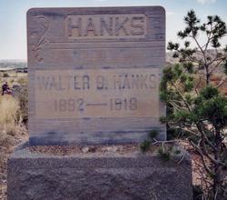 Walter Benjamin Hanks