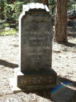 Alice <i>Barker</i> Turner