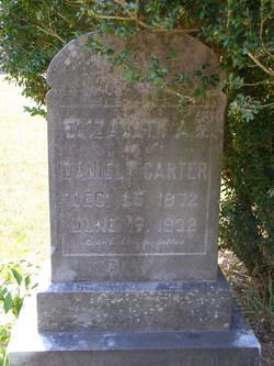 Elizabeth A Carter