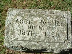 Abbie <i>Palmer</i> Anderson