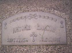 Antonia <i>Koca</i> Hamouz