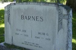 Jacob Oliver Barnes