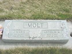 Arthur William Molt