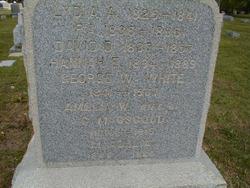 Mary Adelia <i>White</i> Osgood