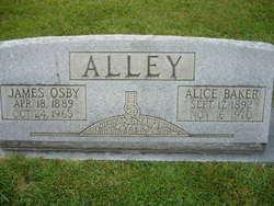 Alice <i>Baker</i> Alley