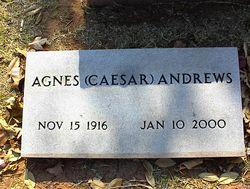 Agnes <i>Caesar</i> Andrews