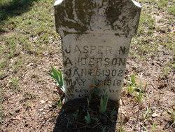 Jasper N Anderson
