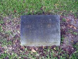 Marcia Estelle <i>Allen</i> Aiken