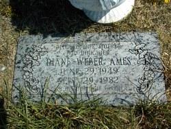 Diane <i>Weber</i> Ames