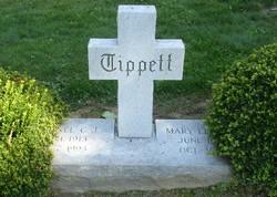 Col C. J. Tippett
