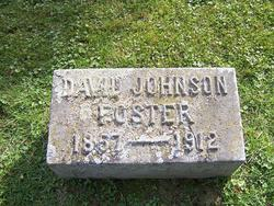 David Johnson Foster
