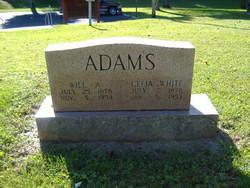 Celia <i>White</i> Adams