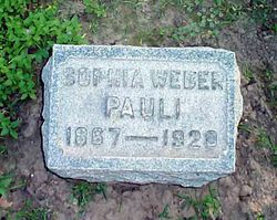 Sophia W <i>Weber</i> Pauli