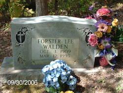Forster Lee Walden