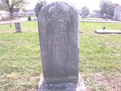 Julia A. Reynolds