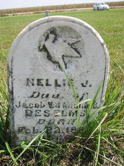 Nellie J. Deselms