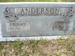 J Bernice Anderson