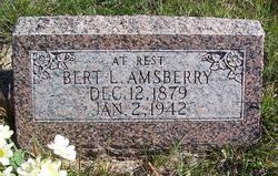Bertram Luther Bert Amsberry