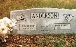 Robert Larry Anderson