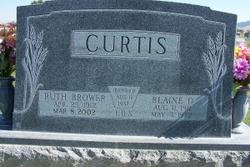 Blaine D. Curtis