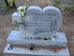 Charlie E. Beck