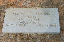 Allison David Adkins
