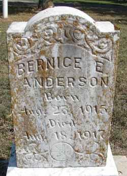 Bernice E Anderson