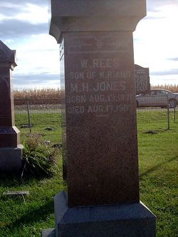 W Rees Jones