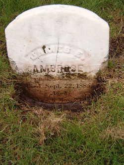 James E Ambrose