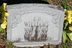 Benjamin M. B.M. Williams
