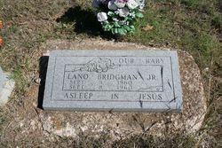 Lano Bridgman, Jr
