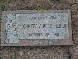 Courtney Reed Albion