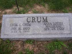 Anna Louise <i>Mallicoat</i> Crum