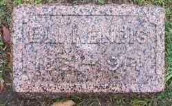 Eli Kendig