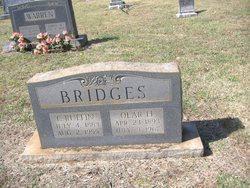 Columbus Ruffin Bridges