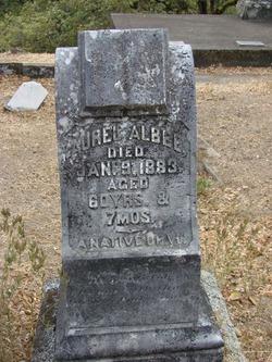 Aurel Albee