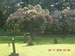 Peiffer Cemetery