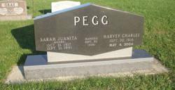 Harvey Charles Pegg