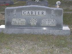 Floy <i>Davis</i> Carter, I