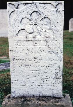 Ezra G Dunn