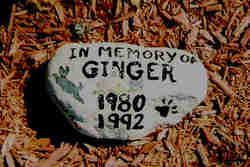 Ginger Cyr