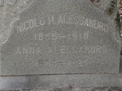 Nicola M Alessandro