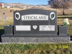 Larry James Strickland