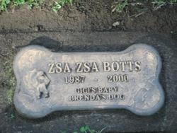 Zsa-Zsa Botts