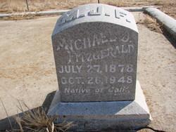 Michael J Fitzgerald