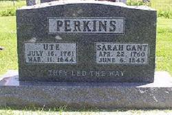 Ute Perkins