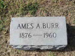 Ames Allen Burr