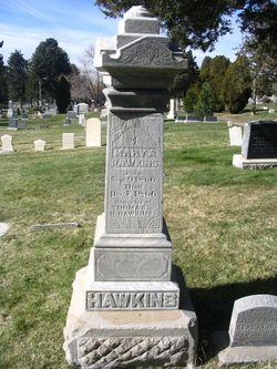 Mary Anna Hawkins