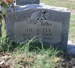 Joe Asbury Fly, Sr